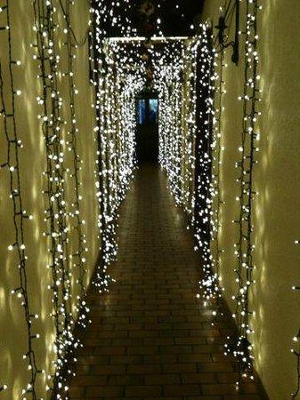 Gourmanderie Moléson: Wunderschöner Lichtervorhang im Eingang.
