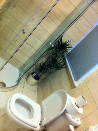 Vagabonds: Bathroom