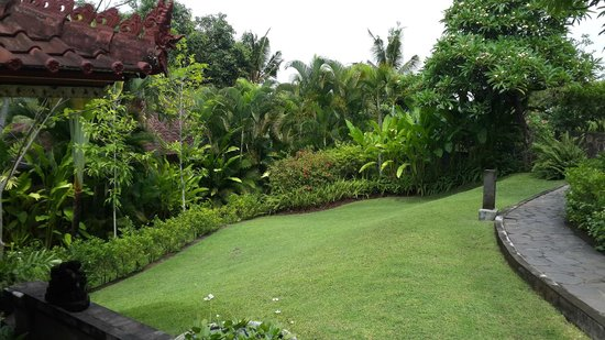 The Damai: View of the garden