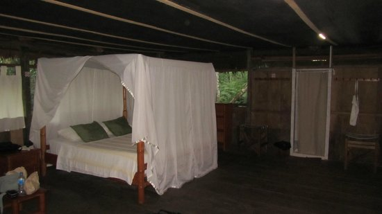 Amazonia Expeditions' Tahuayo Lodge : Room 17 Tahuayo lodge