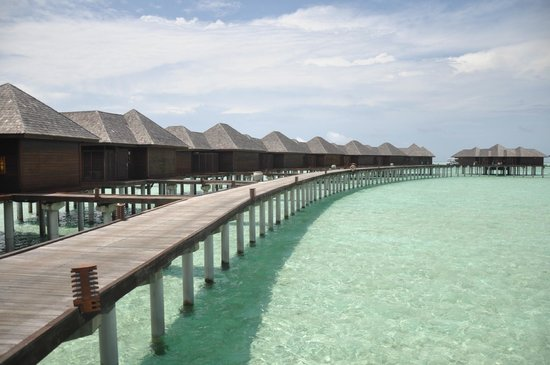 Olhuveli Beach & Spa Maldives: Honeymoon watervilla in Olhuveli