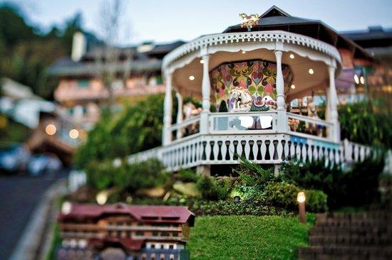 Hotel Casa da Montanha: Carrossel