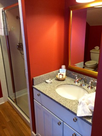 The Inn at Manchester: Bathroom in the Sweet William room