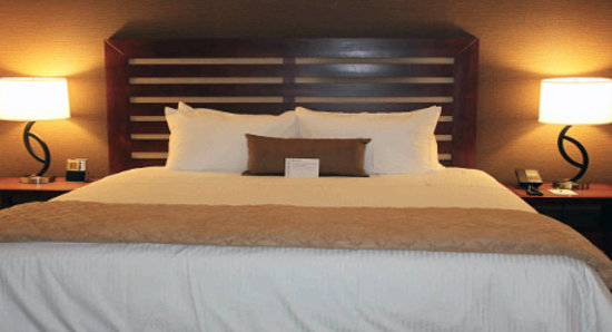 Wyndham Garden Grand Rapids Airport: Newly Renovated 1 King Bed