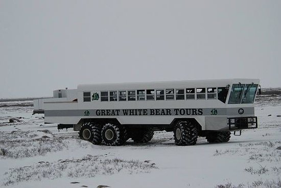Great White Bear Tundra Lodge: The Rover : the locomotion on the tundra.