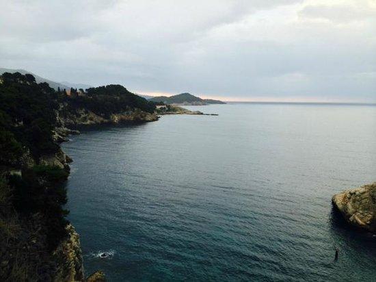 Hotel Bellevue Dubrovnik: room view