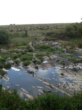 Rekero Camp, Asilia Africa: Talek River