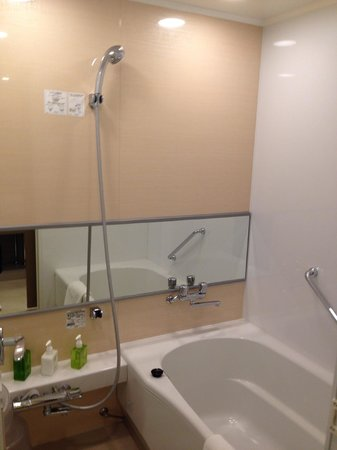 Hotel Ryumeikan Tokyo: Shower and Bathtub