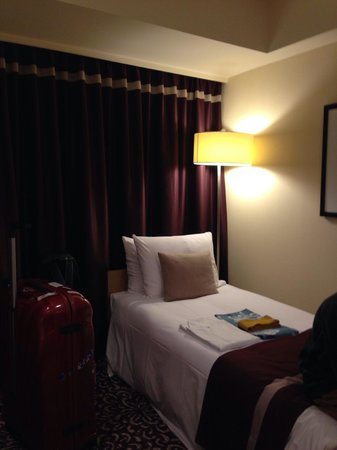 Hotel Ryumeikan Tokyo: The extra bed
