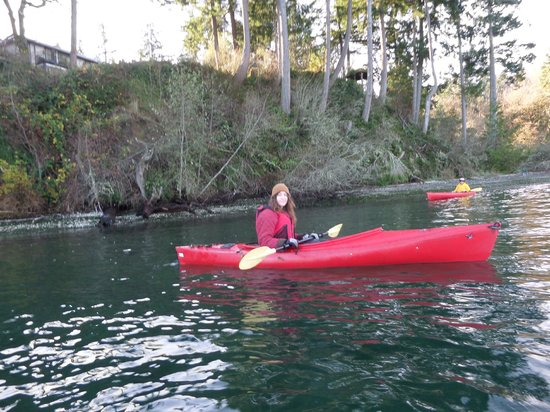 The Inn at Mallard Cove: Kayaking on the Sound