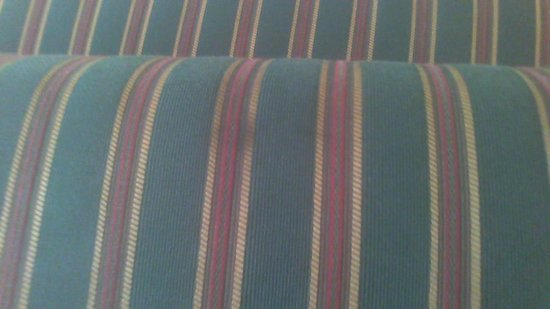 Residence Inn Saratoga Springs: Filthy sofa cushion