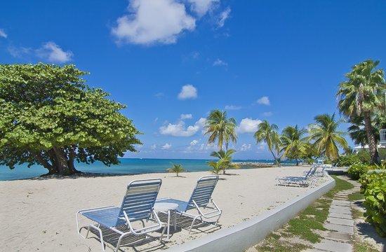 The Grandview Condos Cayman Islands: Ocean Front views!