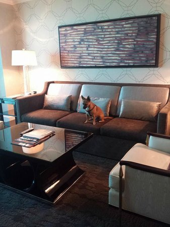 Four Seasons Hotel Las Vegas: Suite living room