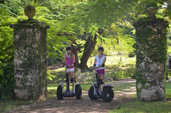 Prospect Plantation: Segway Tour of the Plantation