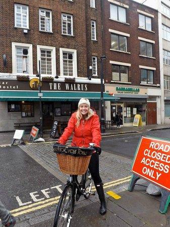 Tally Ho! Cycle Tours: walrus