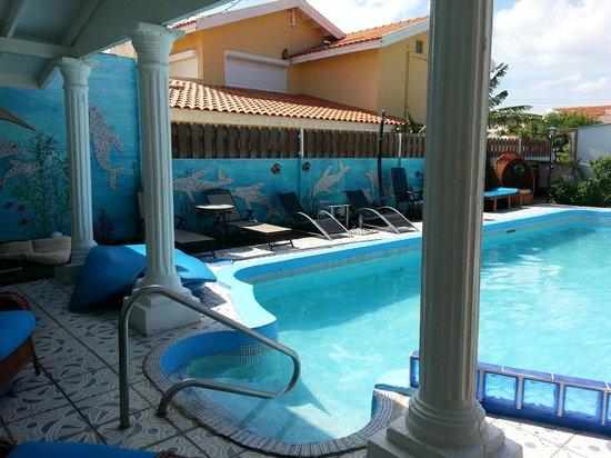 Villa Sunflower: pool area