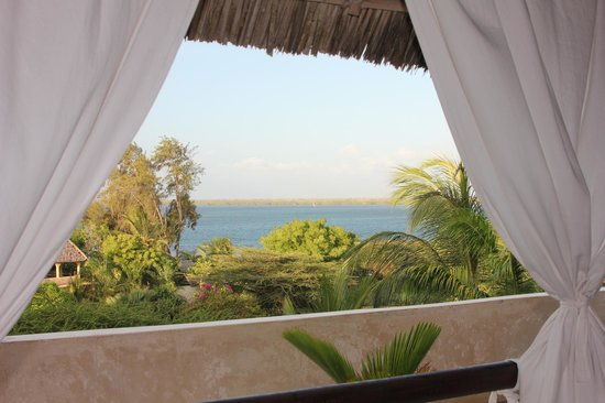 Banana House & Wellness Centre: View from the room.