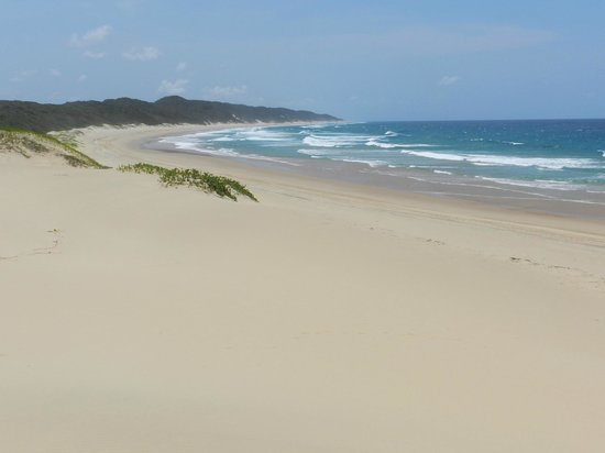 Rocktail Camp: Rocktail Beach