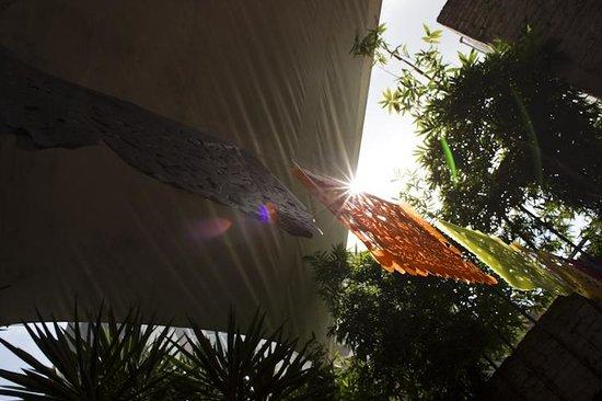Hostal B&B Dos Fridas y Diego: cool garden dining
