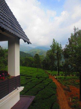 Gruenberg Tea Plantation Haus: View From Restaurant