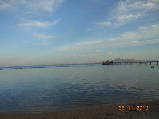 Tamra Beach: TAMRA 2013