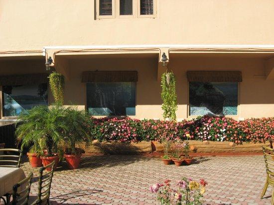 Blueberry Inn: Garden