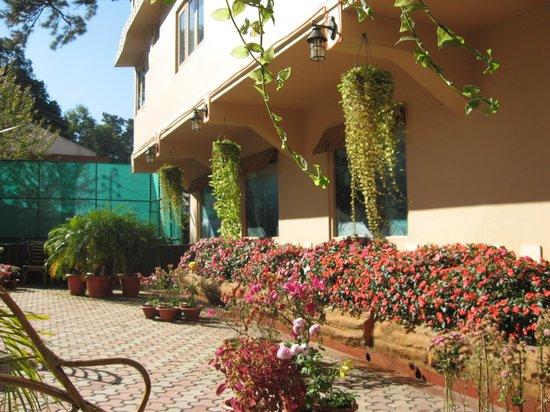 Blueberry Inn: Garden view