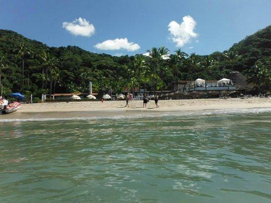 Hyatt Ziva Puerto Vallarta: beach