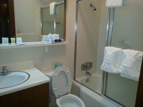 Gatlinburg Inn : Clean restroom with all the amenities you need.