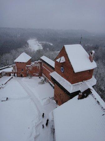 Turaida Castle: Вид с башни