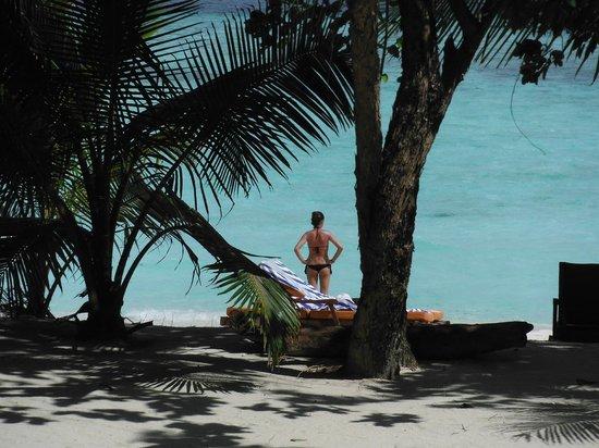 Pom Pom Island Resort & Spa: ... beach villa ...