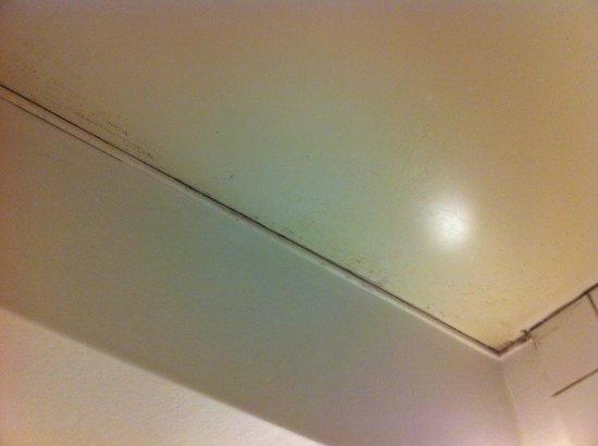 Libertel Canal Saint-Martin : les moisissures du plafond