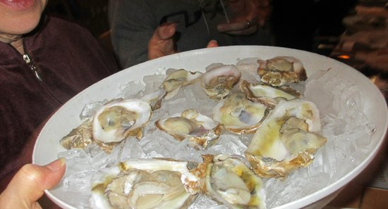 The Siesta Key Oyster Bar: Siesta Key Oyster Bar Oysters!