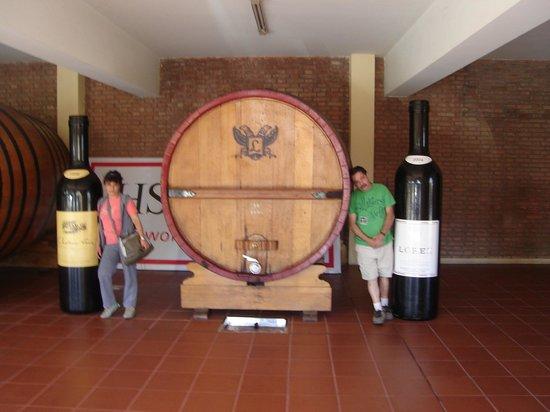 Mendoza Holidays: Bodegas Lopez