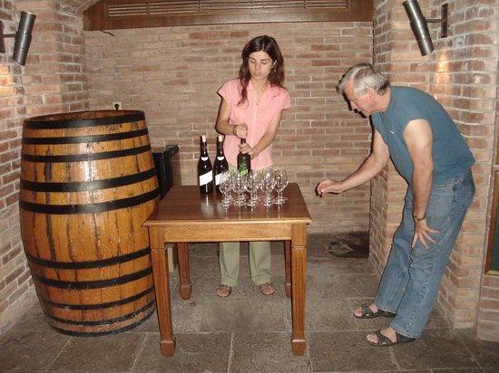 Mendoza Holidays: Desgustación de vinos