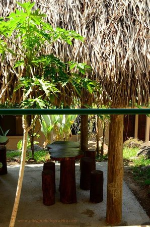Big Bamboo Uvita: rancho