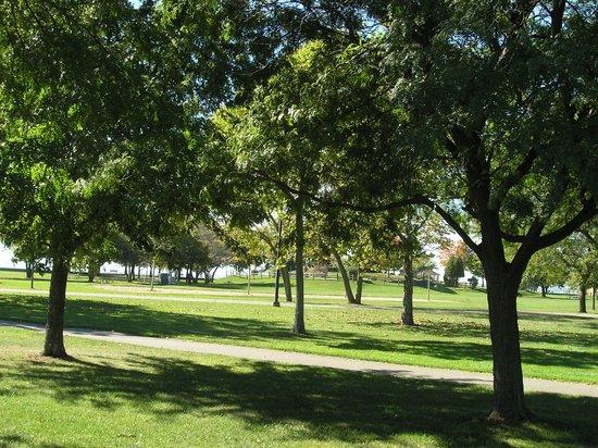 Lake St. Clair Metropark: Lush greenery