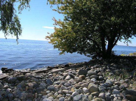Lake St. Clair Metropark: Rugged shoreline