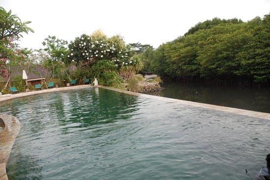 Mimpi Resort Menjangan: Hotellet ligger i en stille bugt med udsigt til 4 vulkaner.