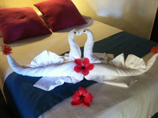 Mahekal Beach Resort : Fun animals made by chambermaids