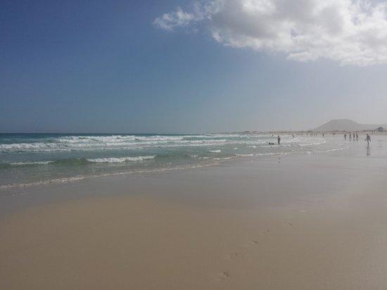 Corralejo Dunes: beach side
