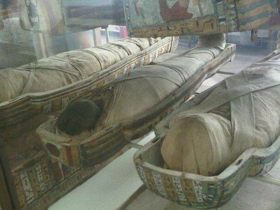 Egyptian Museum of Turin: Le mummie