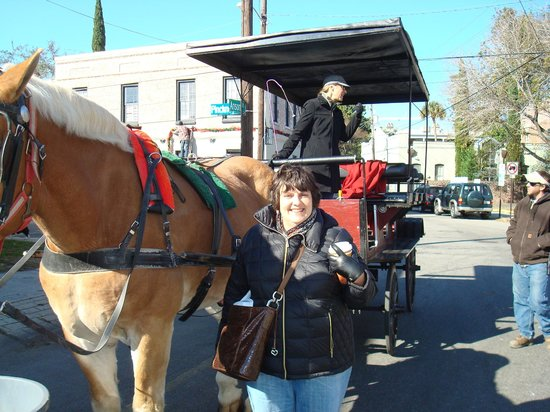 Olde Towne Carriage Company: carriage