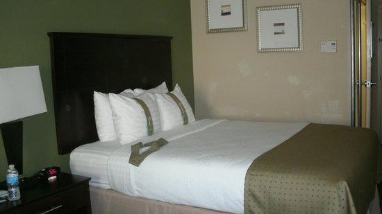 Holiday Inn Daytona Beach LPGA Blvd : Double /Queen room