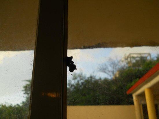 Hotel La Joya : bugs?