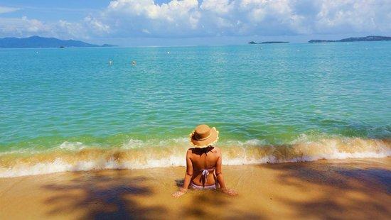 PGS Hotel Sandy Resort : пляж