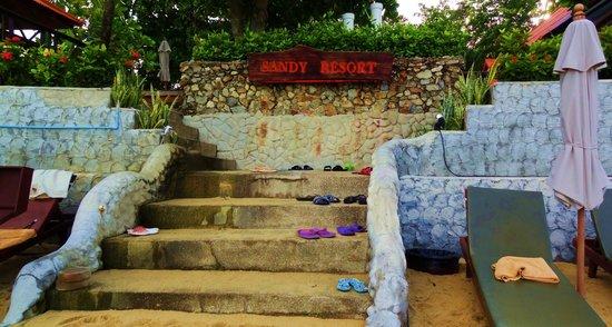 PGS Hotel Sandy Resort : лестница на пляж