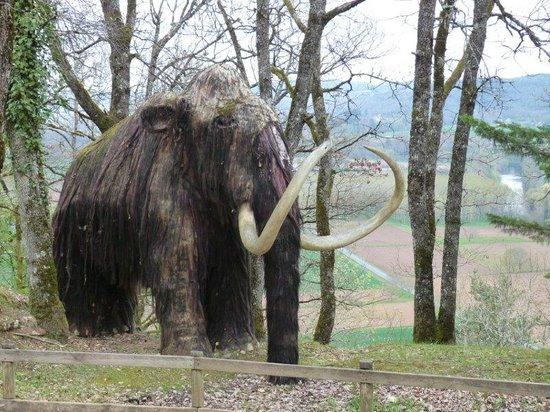 Le Thot : Mammouth (un peu pelé!!)