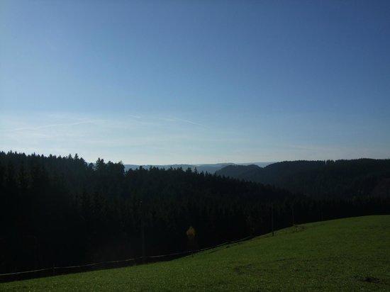 Naturparkhotel Adler St. Roman : la forêt noire