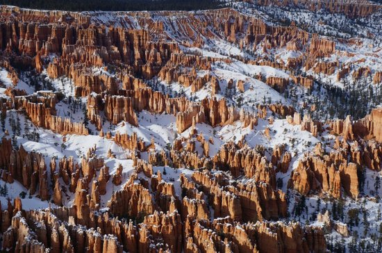 Bryce Point: Some of the best views of the hoodoos in the park
